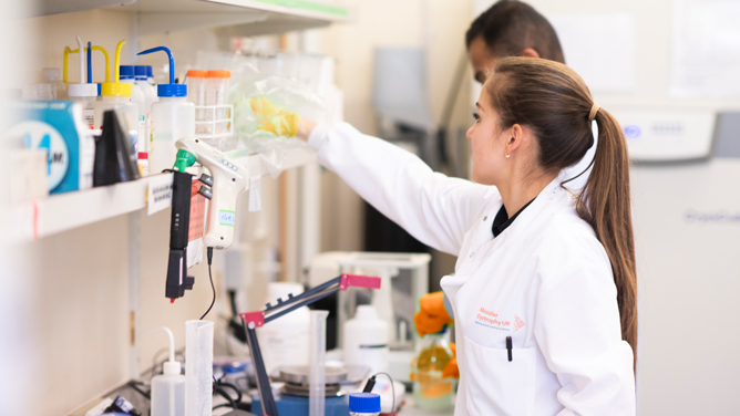 A female lab technican reaches for some materials in a lab while her male colleague works in the background.