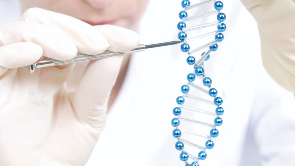 A picture of a scientist holding a section of DNA